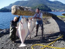 WardCoveHalibut
